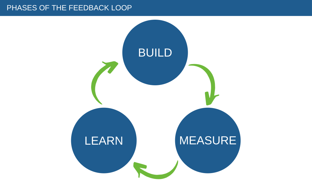 feedback loop phases